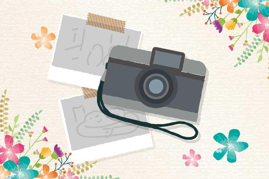 【無料写真】クオリティの高い日本の画像素材サイト!商用もOK